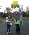 Rubiks cube and House Costume