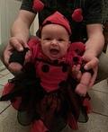 Angry Ladybug Costume