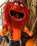 Animal Muppet Costume
