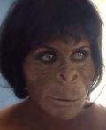 Ape Woman Costume