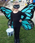 Big Winged Butterfly Costume