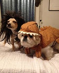 Caveman and Dinosaur Costume