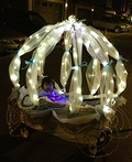 Cinderella Carriage Costume