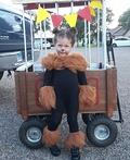 Circus Lion Costume