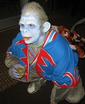 Nikko Winged Monkey Costume