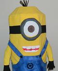 Despicable Me Minion Kevin Costume