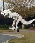 Dino the T-Rex Costume