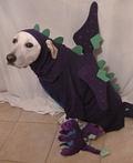 Doggie Dragon Costume