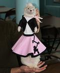 Doo Wop Ferret Costume