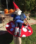 Elias the Gnome Rests on a Mushroom Costume