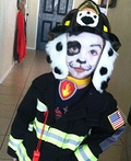 Fire Pup Costume