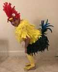 Heihei from Moana Costume