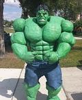 Incredible Hulk Costume
