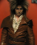 Jareth the Goblin King Costume