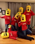 LEGO Minifigures Costume