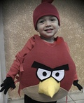 Little Angry Bird Costume