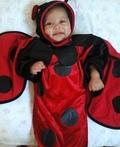 Little Ladybug Costume