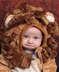 Little Lion Costume