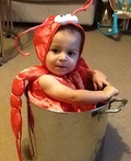 Little Lobster in a Pot Costume