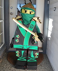 Lloyd Garmadon Costume