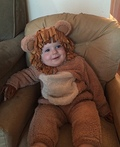 Lovable Lion Costume