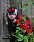 Lovely Little Ladybug Costume