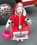Marshall the Fire Pup from Paw Patrol Costume
