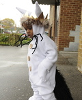 Max Where the Wild Things Are Costume