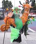 Mermaid and Seahorse Costume