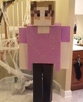 Minecraft Character Costume