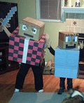 Minecraft Mayhem Costume
