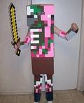 Minecraft Zombie Pigman Costume