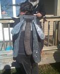 Miss Mosquito Costume