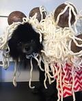 Mom's Spaghetti Costume