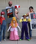 Nintendo Family Costume