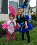 Peacock and Flamingo sisters Costume