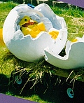 Egg and Chick Costume