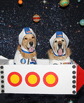 Phoenix and Gryphon the Astronauts Costume