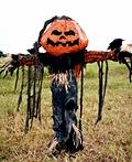 Pumpkin Patch Scarecrow Costume
