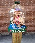 Snow Globes - New Orleans and Hawaii Costume