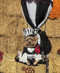 Steampunk Yorkie Costume