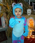 Sulley from Monsters Inc. Costume
