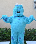 Sully Costume