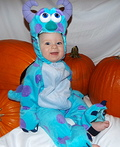 Sully from Monsters Inc. Costume