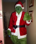 The Grinch Costume