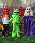 Muppets Costume