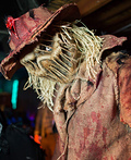 The Scarecrow Costume