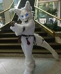 The White Dragon Costume