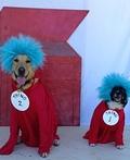 Thing 1 & 2 Costume