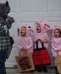 Three Little Pigs and The Big Bad Wolf Costume
